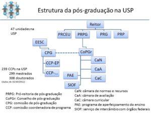 imagem-estrutura-PG-USP-v2